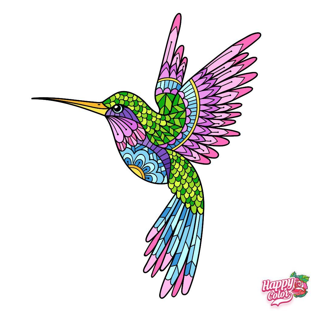 Pin by Sara Galarza on Mándala ideas Bird coloring pages