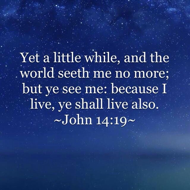 Image result for john 14:19 kjv