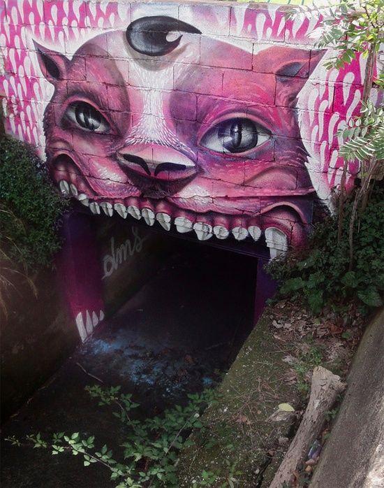 The Street Art of DMS