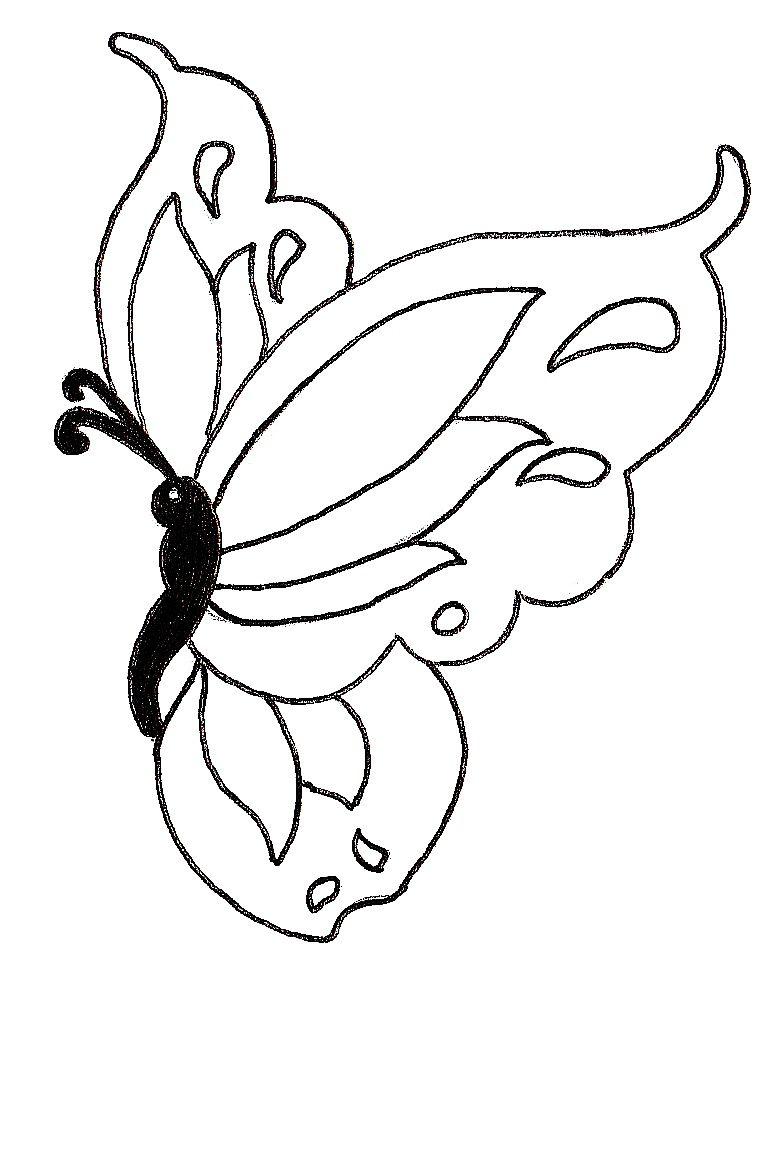 Cute butterfly drawing | Šablony | Pinterest