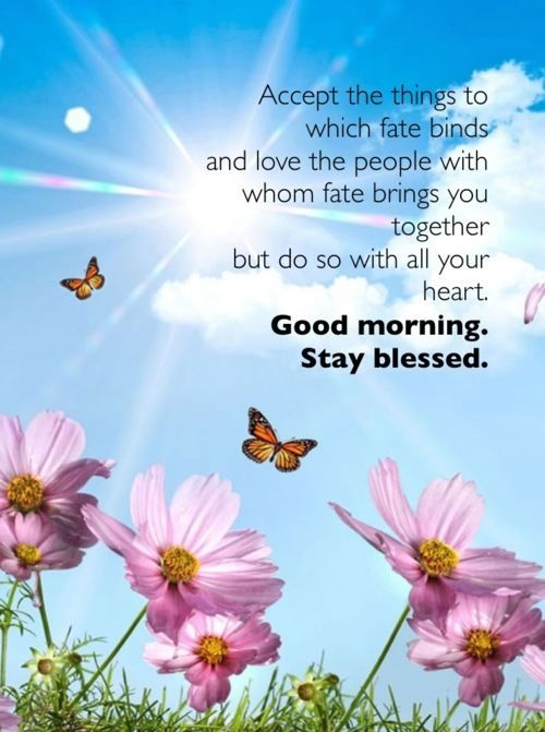 Good Morning Stay Blessed Good Morning Good Morning Greeting Good
