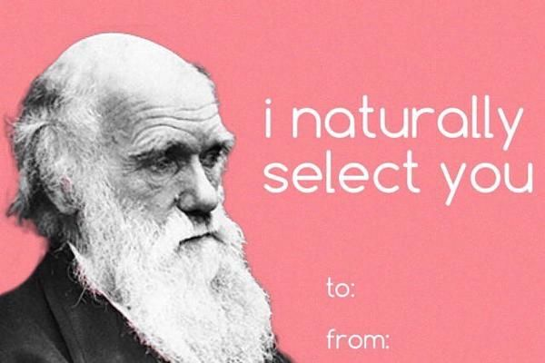 21 Best Science Teacher Memes Bad Valentines Cards Funny Valentines Cards Meme Valentines Cards