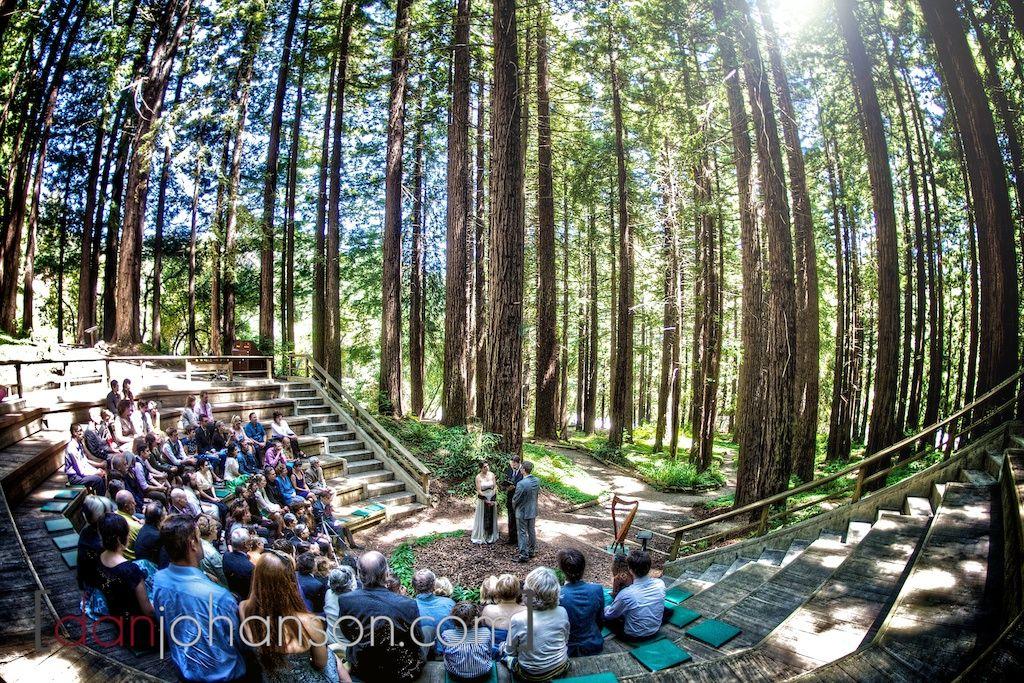 A Beautiful Berkeley Wedding In The Redwood Groves Wedding Venues Weddings And Wedding