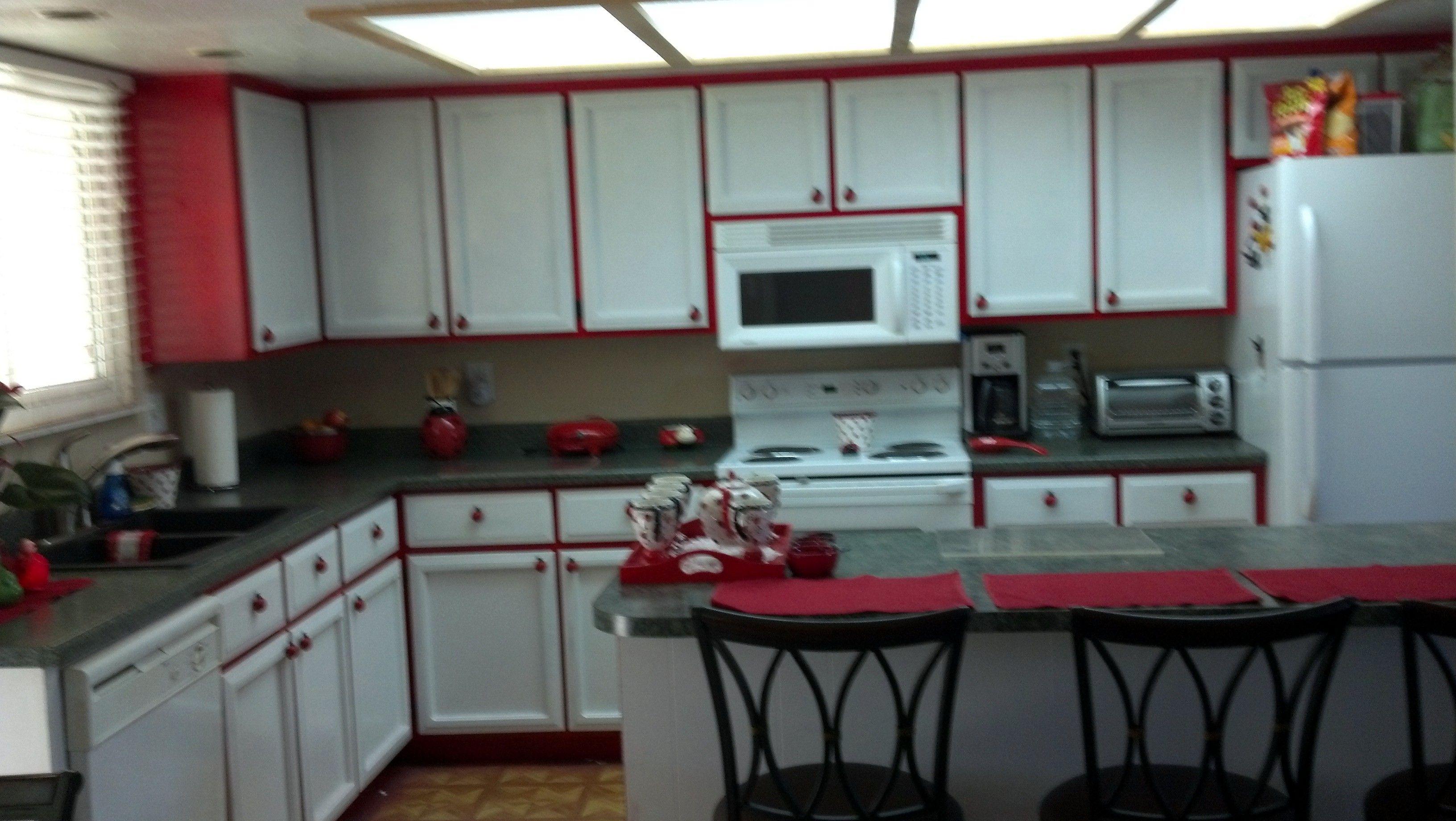 My Newly Painted Ladybug Kitchen New Kitchen Kitchen Kitchen Paint