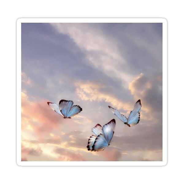 Butterfly Clouds Sticker by chelseam8