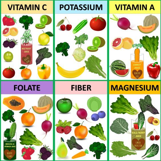 plant based diet for beginners pdf