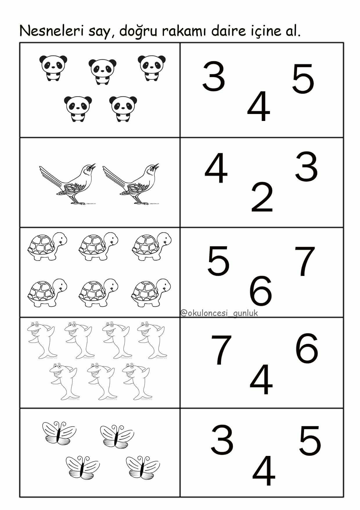 Free Printable Sunflower Ordering Worksheets Shortest To