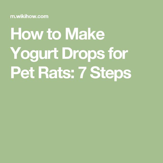 Make Yogurt Drops for Pet Rats | Rat things | Pet rats, How