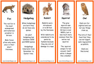 Wildlife Bookmarks | Wildlife day, British wildlife, Wildlife facts