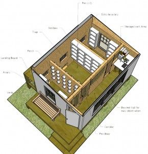 Necessary Elements Of A Champion Pigeon Racing Loft Pigeon Loft Pigeon Loft Design Racing Pigeon Lofts