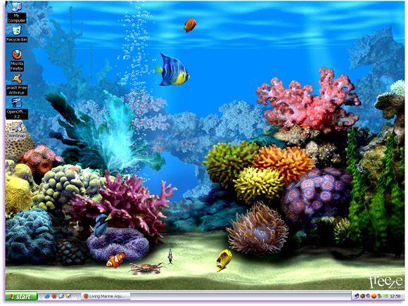 Living Marine Aquarium Animated Wallpaper Free Wallpaper Ikan Tropis Ikan Akuarium Abstrak