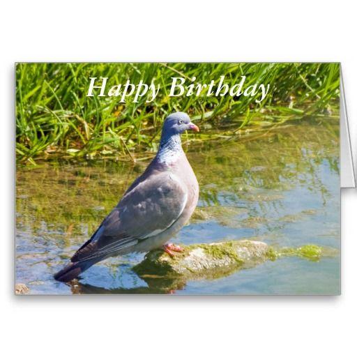 Beautiful Pigeon Bir Happy Birthday Greetings Card Greeting Cards