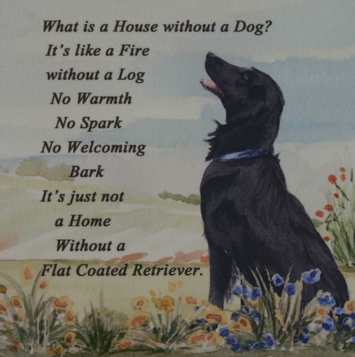 Artists Own Design Printed Onto Plaque Tile Posters Ebay Collectables Flat Coated Retriever Retriever Puppy Retriever