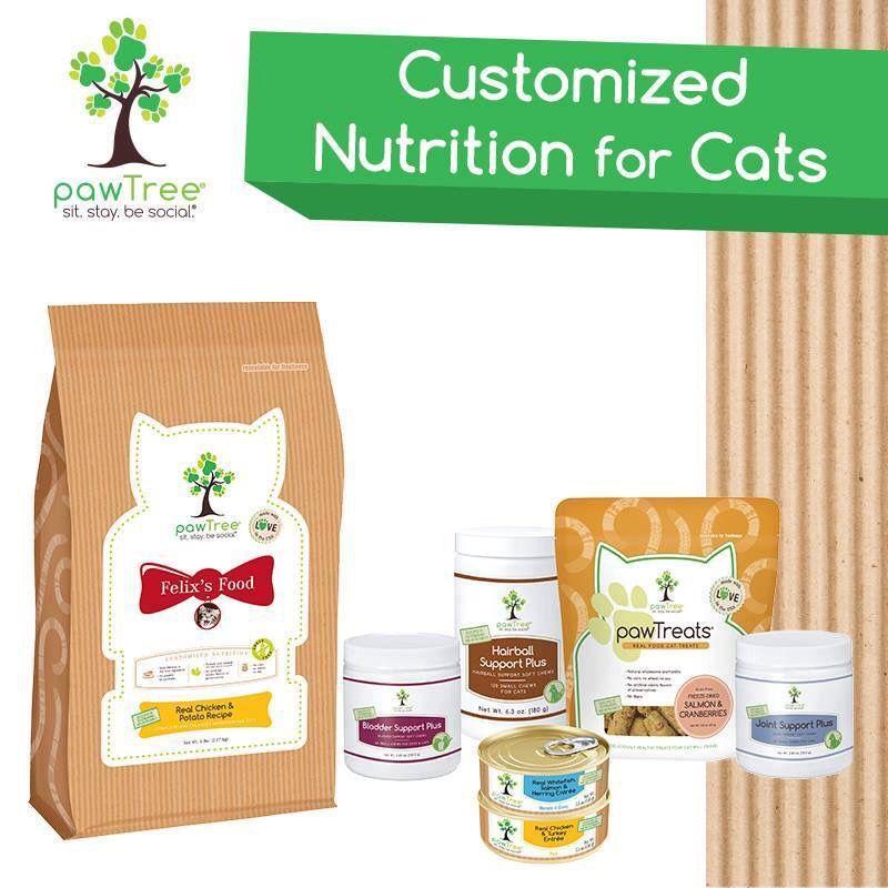 Customized Cat Food Www Nattysnibbles Com Pawtree Cat