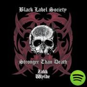 Just Killing Time, a song by Black Label Society, Zakk Wylde on Spotify
