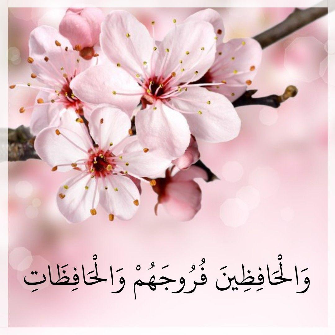 قرآن كريم آية والحافظين فروجهم والحافظات Allah Plants