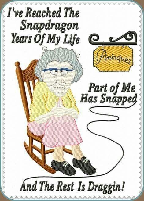 Snapdragon Aging Humor Old Age Humor Senior Humor