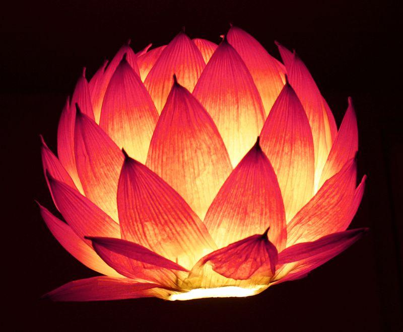 Lotus Lantern Diy Paper Lantern Centerpieces Lantern