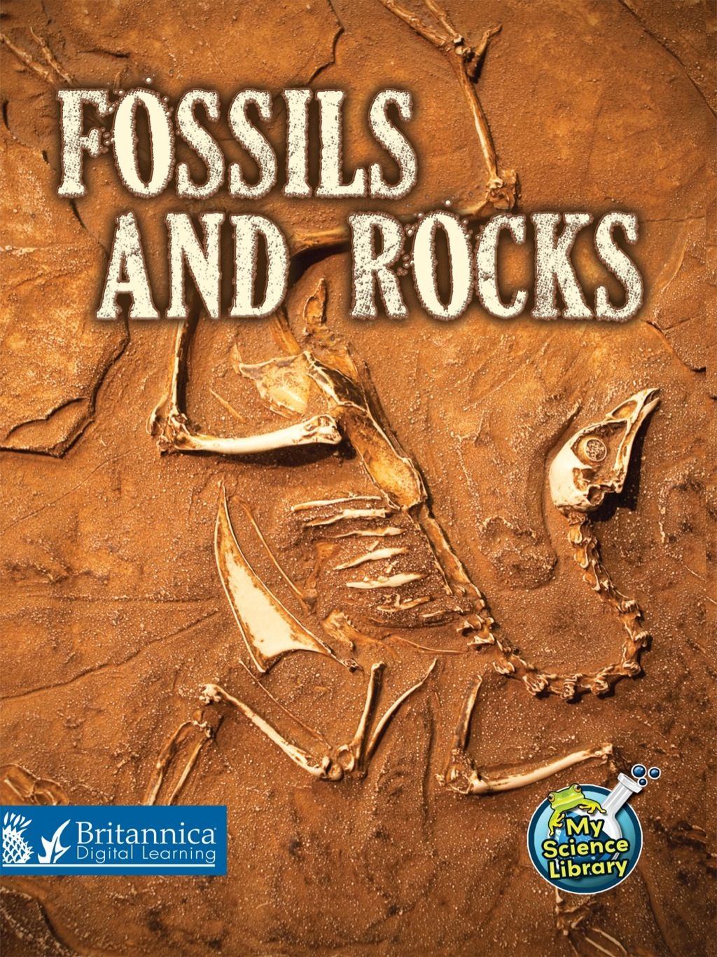 Fossils And Rocks Ebook