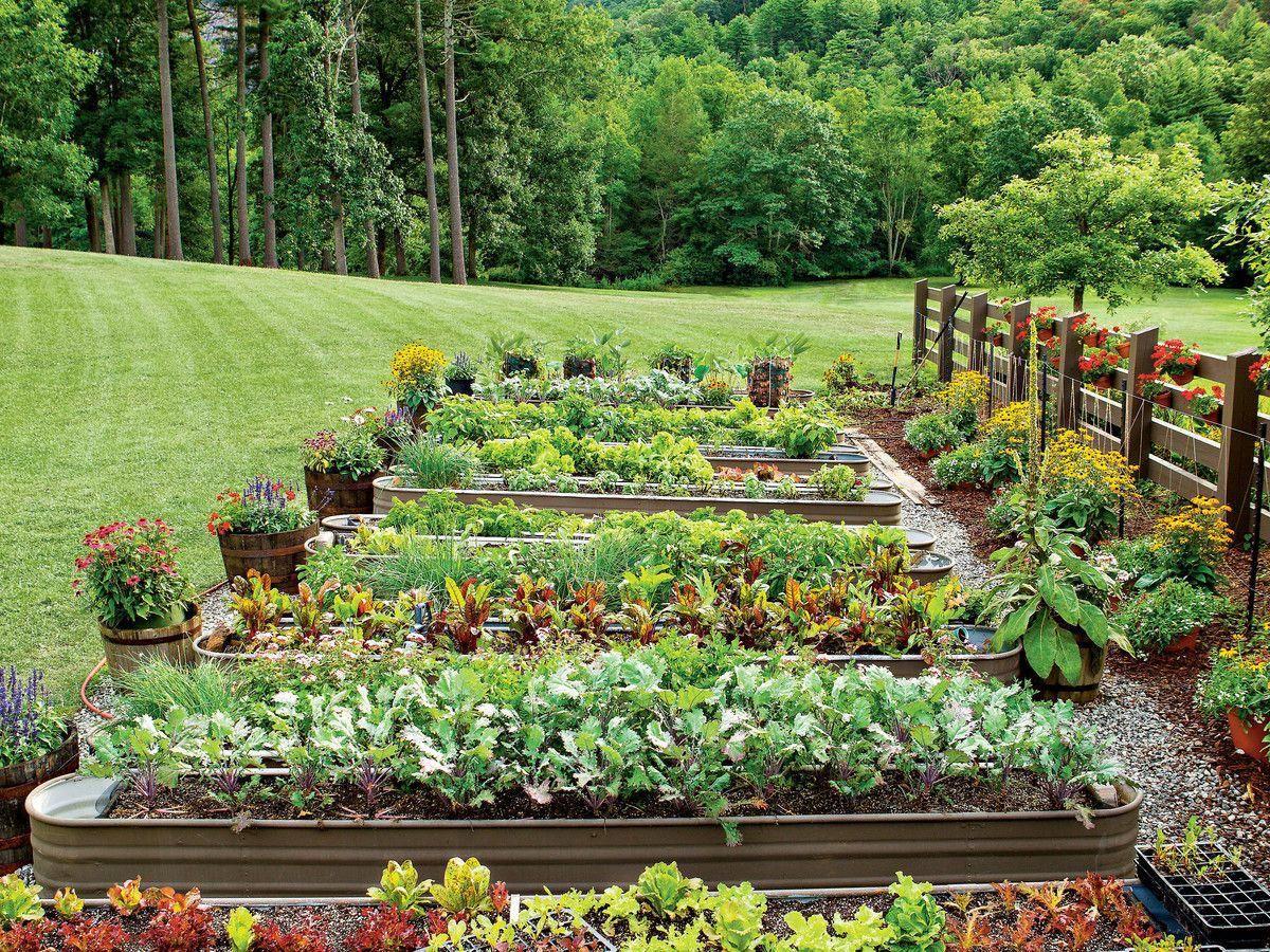 Best Organic Gardening Blogs Organicgardeningequipment With