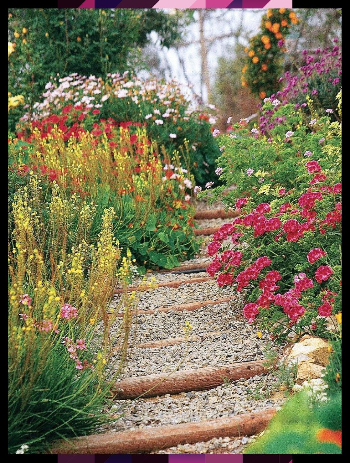 6 Steps to a No-Work Cottage Garden #Cottage #garden #NoWork #steps