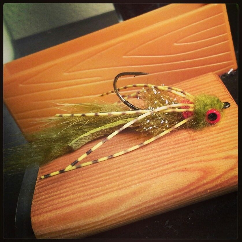 Bass Bully | Fly patterns | Fly fishing for bass, Bass fishing, Fly