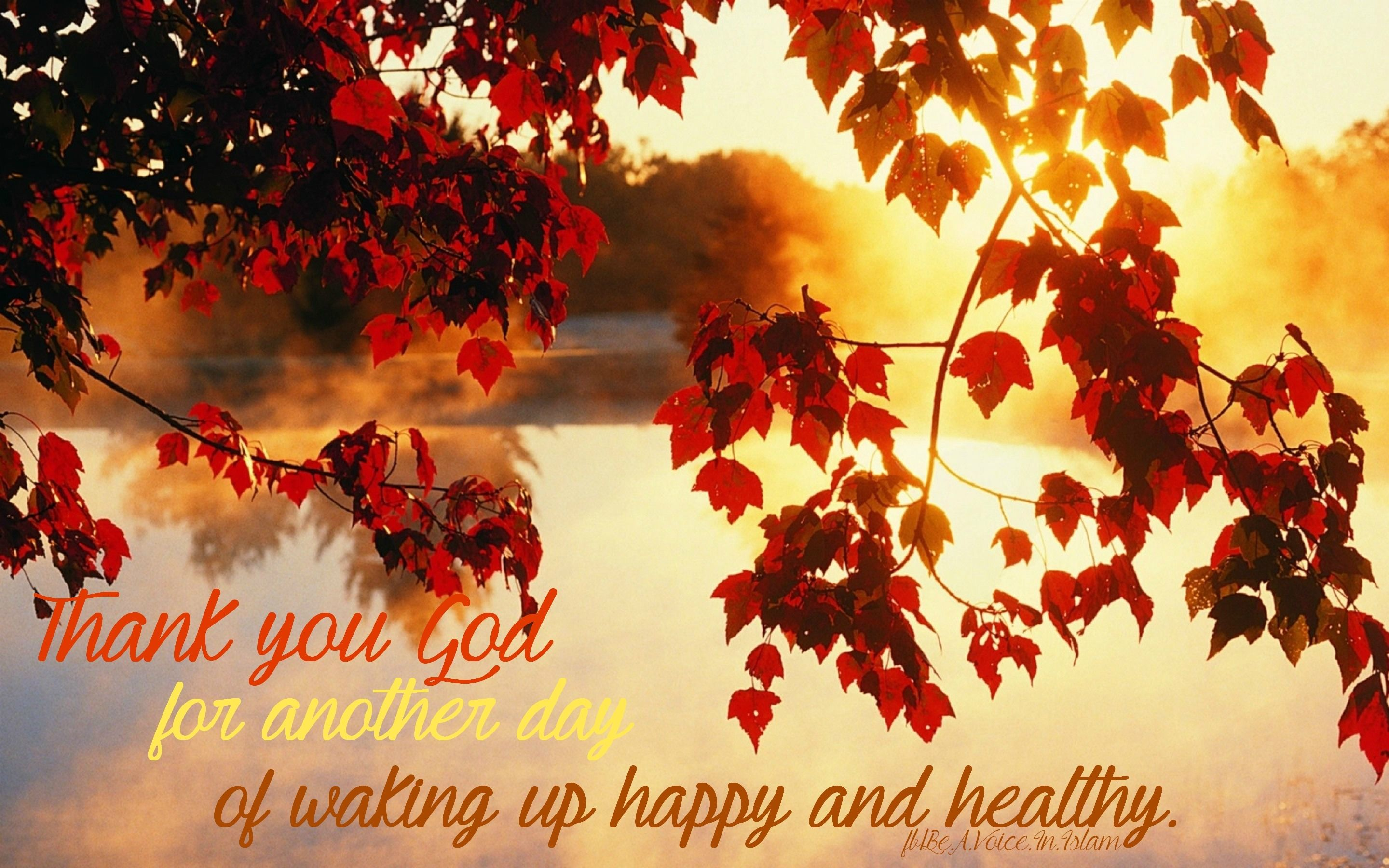 Thank You God For Another Day Life Quotes Autumn Inspirational Quotes Fall  Thankful Good Morning