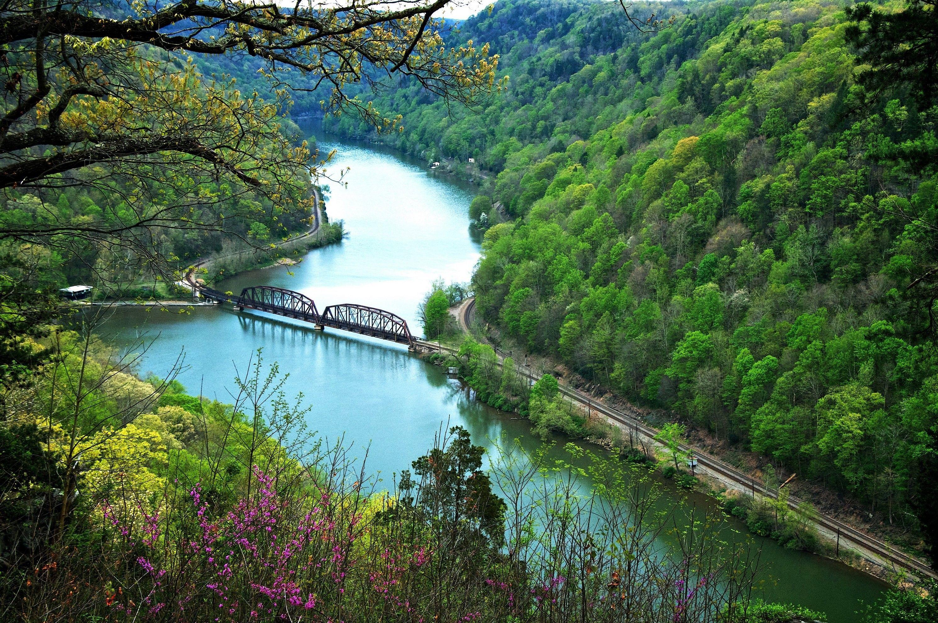 Railroad Bridge Train Tracks Scenery River Nature Forest