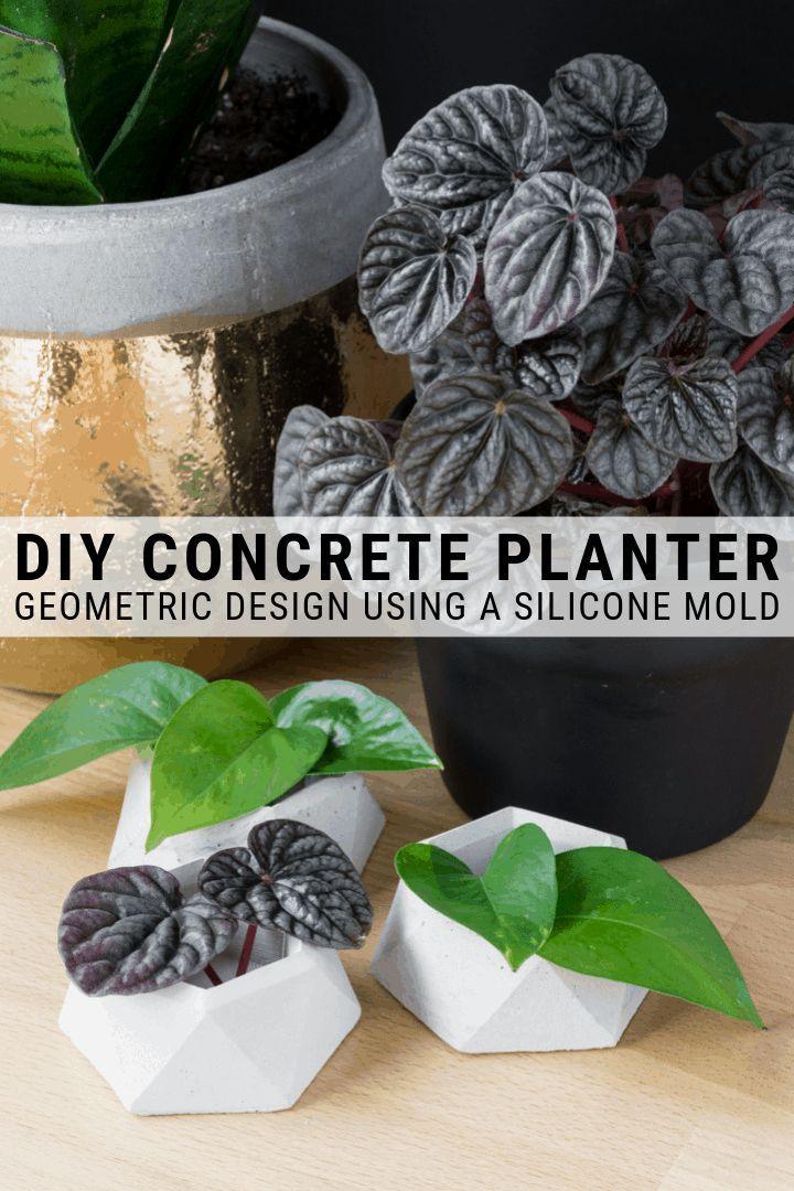 DIY Geometric Concrete Planter Pot Using a Silicone Mold