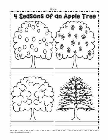 An Apple Tree In 4 Seasons Seasons Worksheets Seasons Kindergarten Kindergarten Worksheets Printable