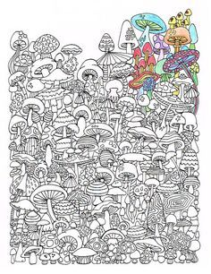Adult Coloring Page Mushrooms Printable By CandyHippie