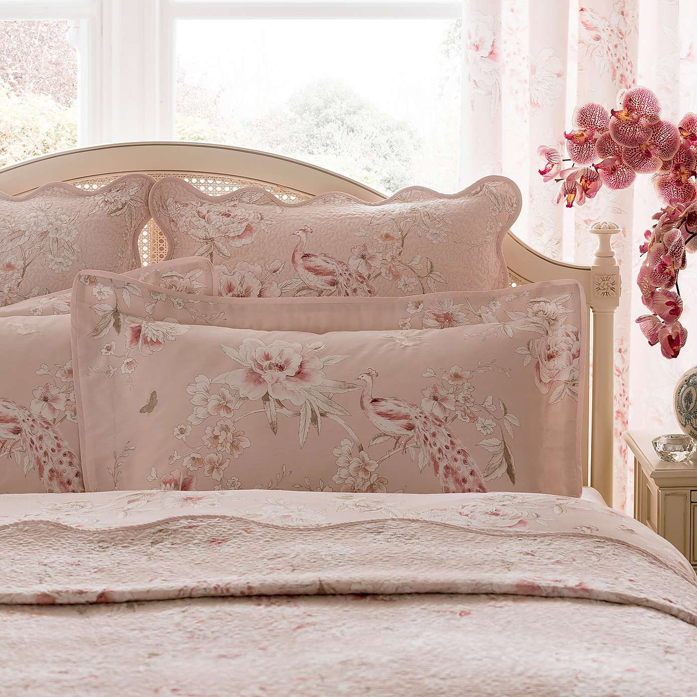 Dorma Blush Paradise Oxford Pillowcase