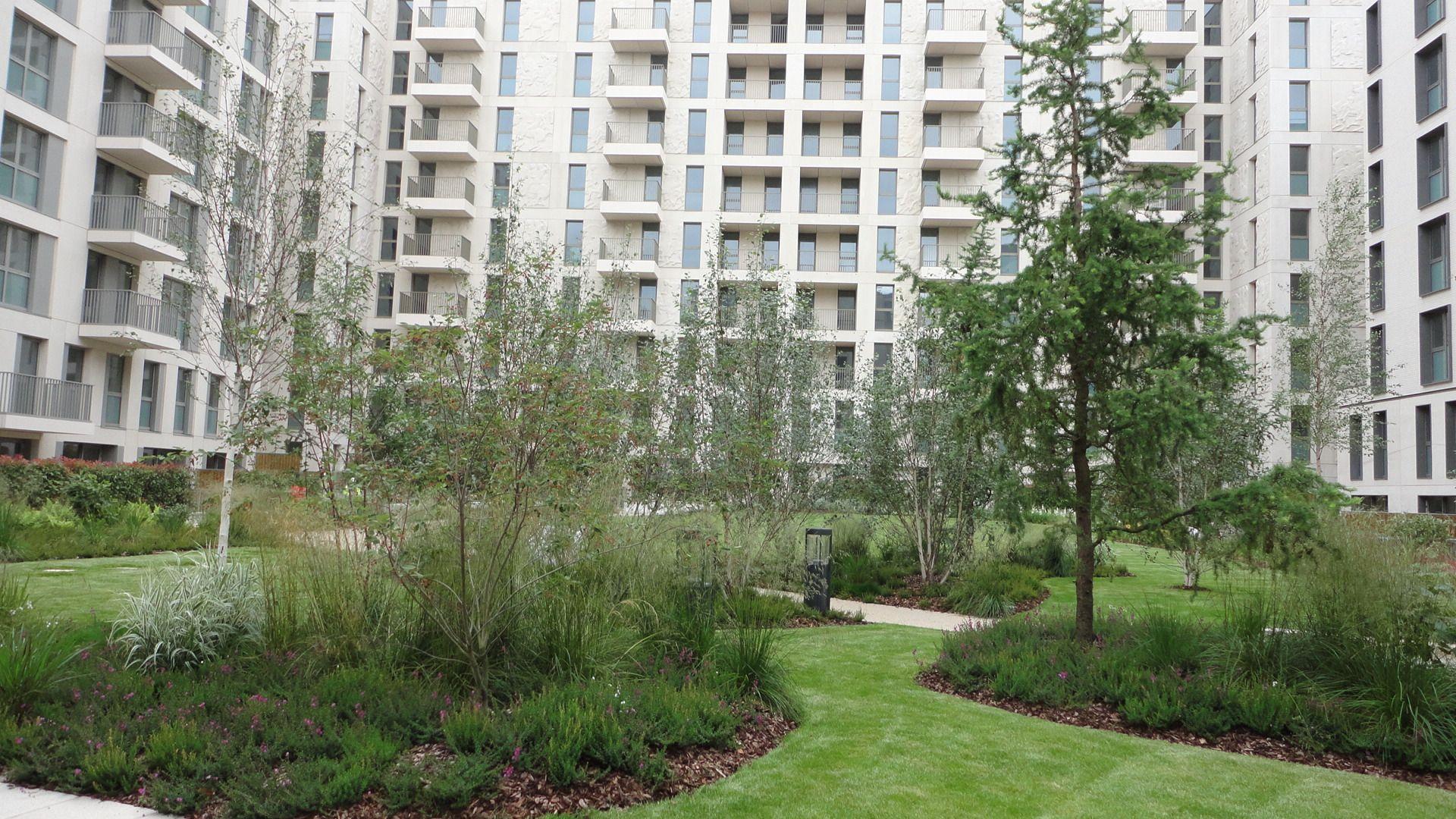 podium garden athlete s village soft landscape