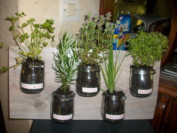 cadeau herbes aromatiques fete des meres sous verre pinterest herbes aromatiques f te des. Black Bedroom Furniture Sets. Home Design Ideas
