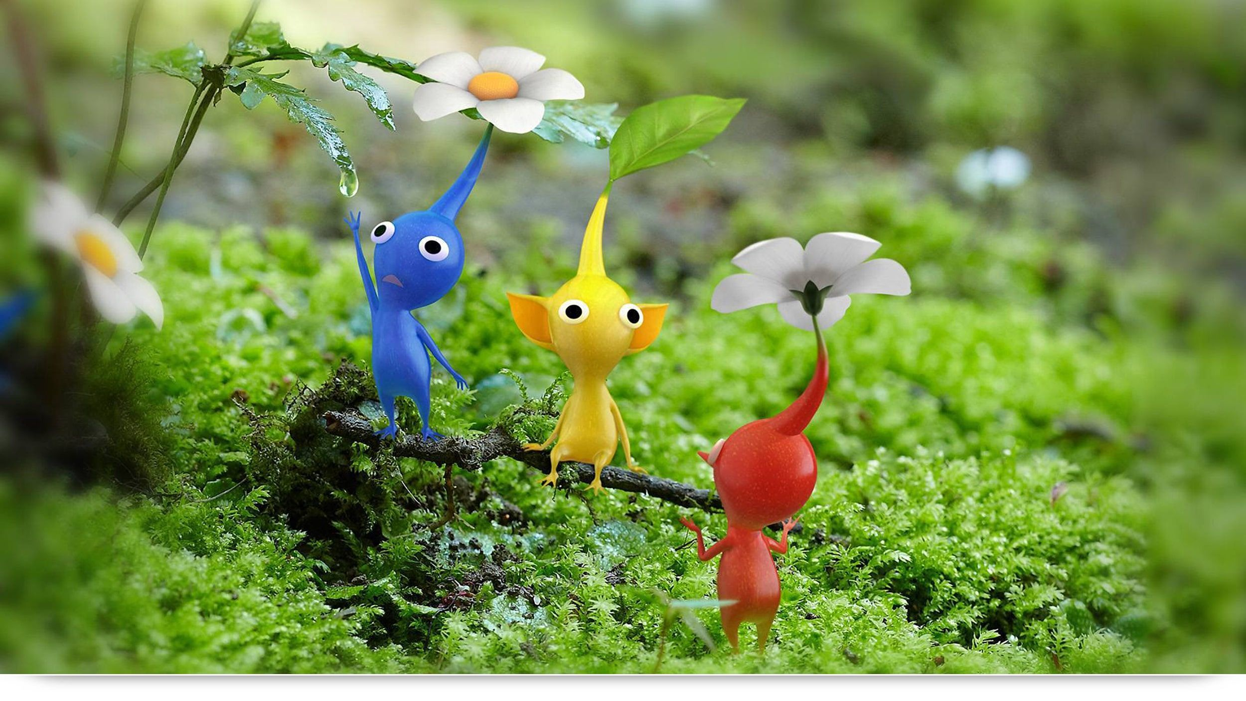 Pikmin Level By Level The Forest Of Hope Nintendo Wii U Games
