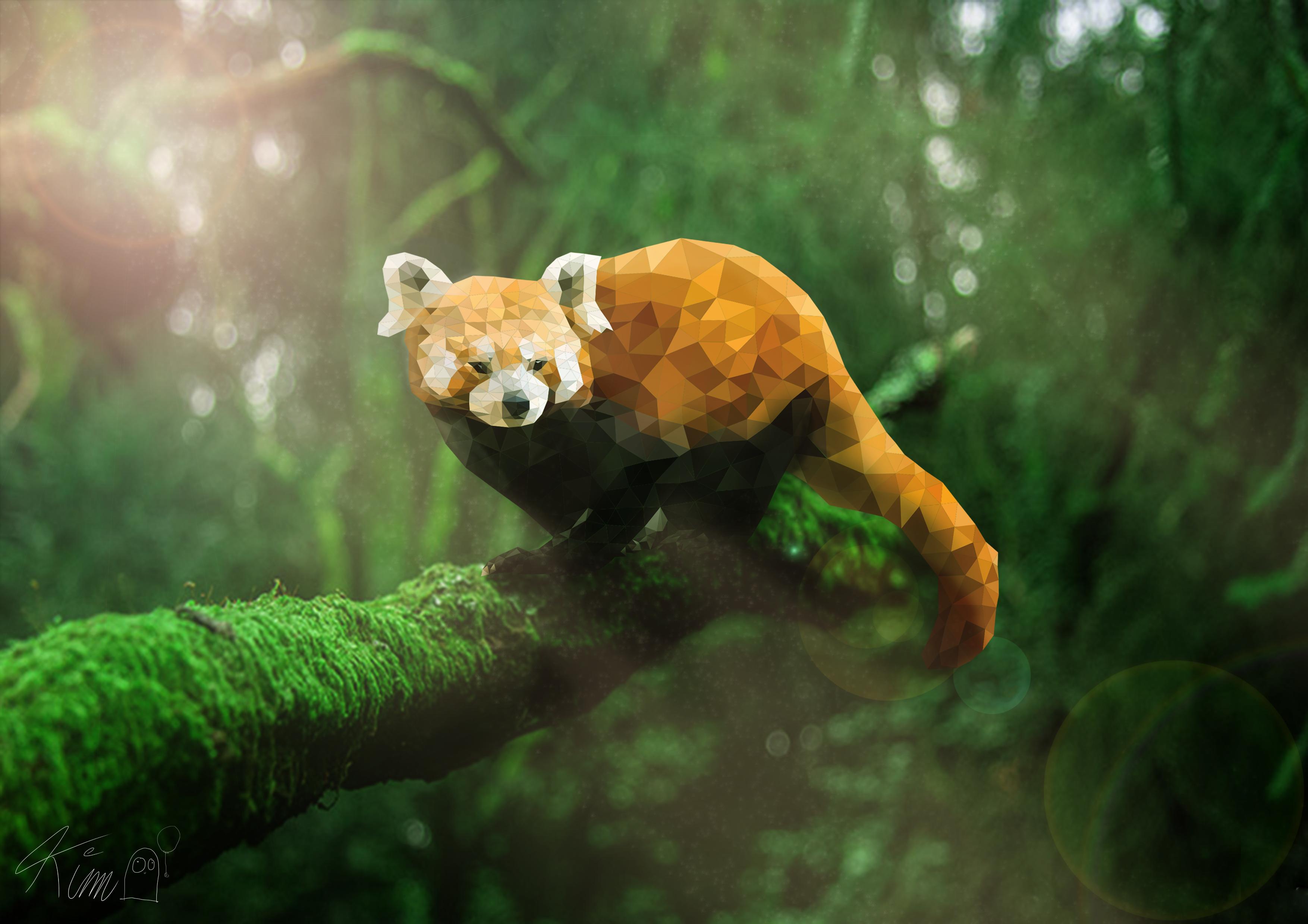 Je Suis Fiere De Mon Rendu Final De Mon Petit Panda Roux Fait Sous