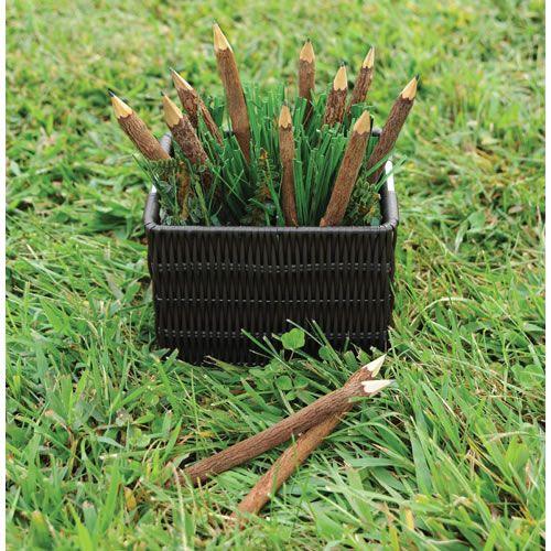 Twig Pencils Set Of 12 Garden Tools Outdoor Learning