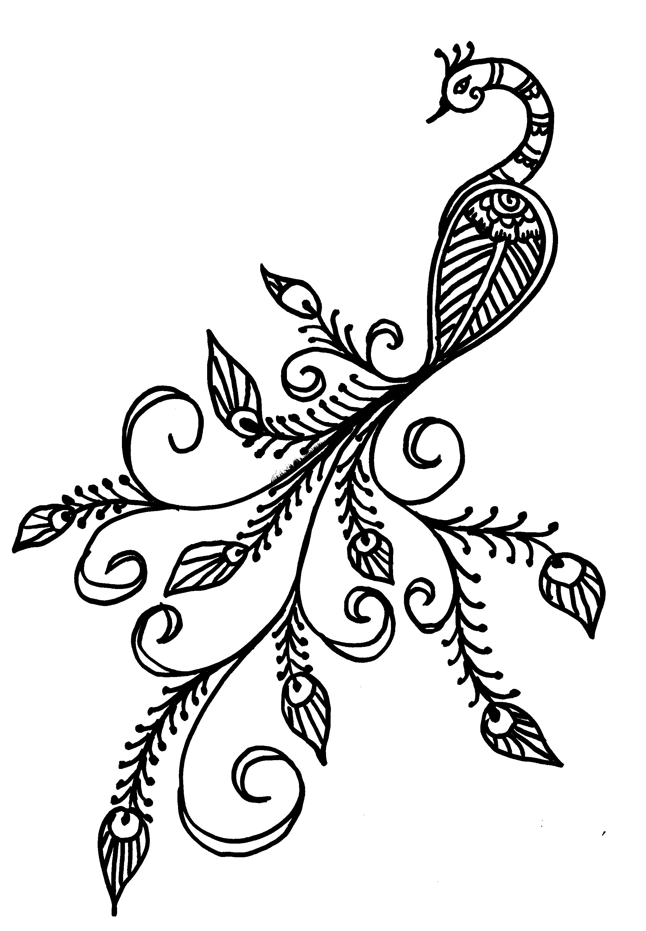 Henna Design Line Art : Easy peacock drawing bing images pinterest