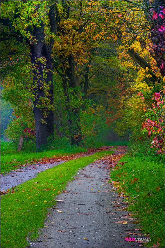 Spirit Of Autumn Beautiful Nature Pictures Autumn Landscape Nature Photography