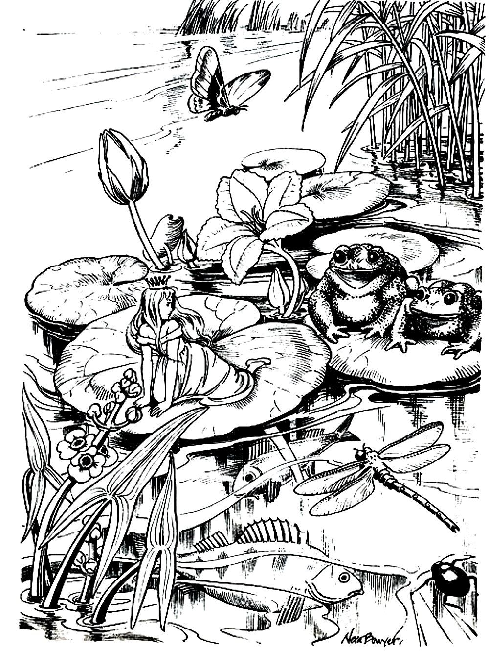 Free coloring page «coloring-adult-difficult-frog-princess