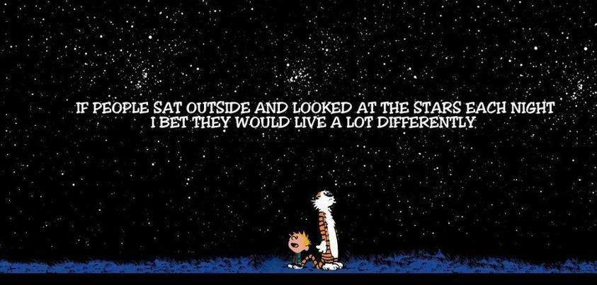 Image result for calvin and hobbes under the stars