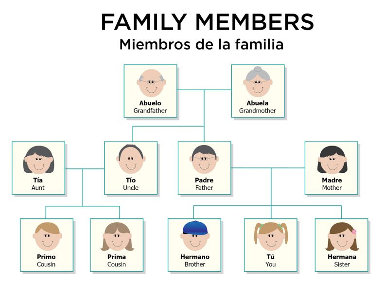Family Members in Spanish : Spanish, Vocabulary words and ...