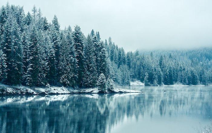 ▷ 1001 + Ideen zum Thema tolle Winterbilder und Wi