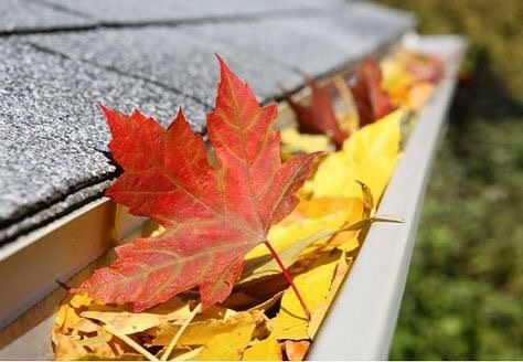 November Maintenance Guide: Keep preparing your home for winter with these tasks. Click the link in our profile to get the full list.