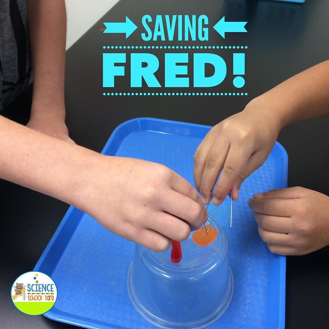Saving Fred Is A Great Free Resource For Teaching Teamwork