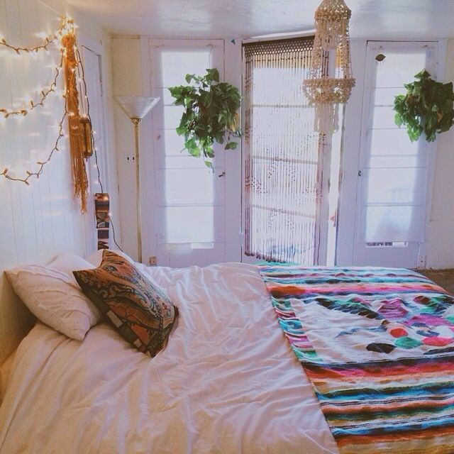 Hanging Plants And Mexican Blankets Part 97