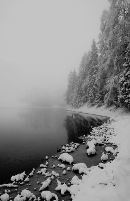 Snow Winter Black And White Lake Forest Mist Woods Fog