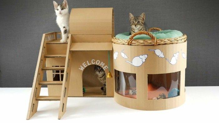 Photo of Construye tu propia casa para gatos: 40 ideas de reciclaje económicas y prácticas + instrucciones de construcción