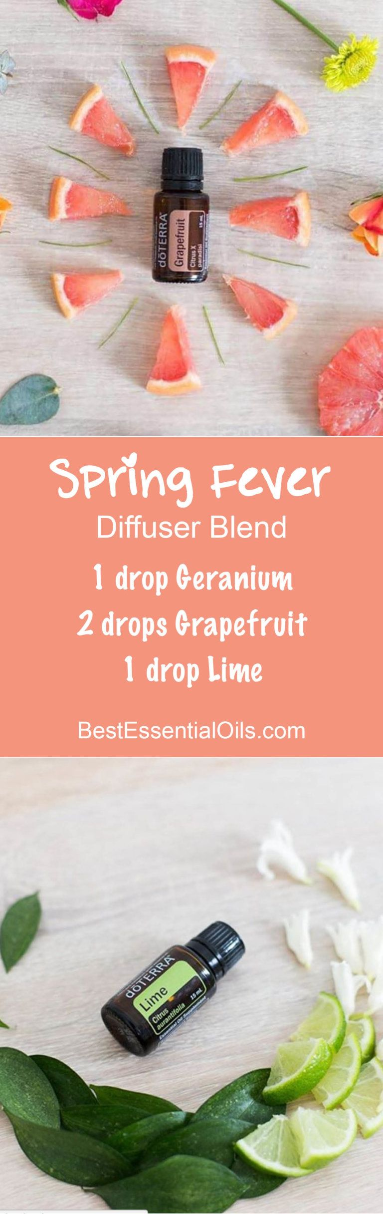 Spring Fever doTERRA Diffuser Blend