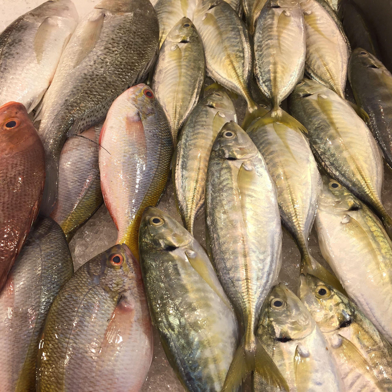 Singapore Fish Market Fish Food Meat